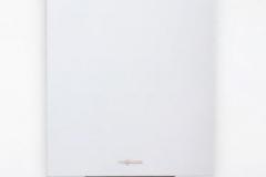 Chaudière Gaz à condensation VITODENS 222-W