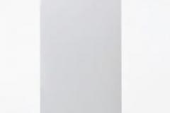 Chaudière Gaz à condensation VITODENS 242-F